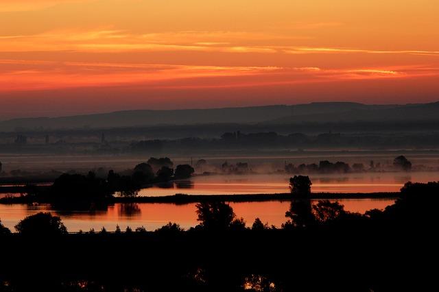 západ slunce, zátoka, stromy