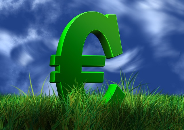 symbol eura